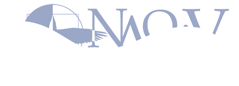 2012_NAOC_logo_transparent_800px