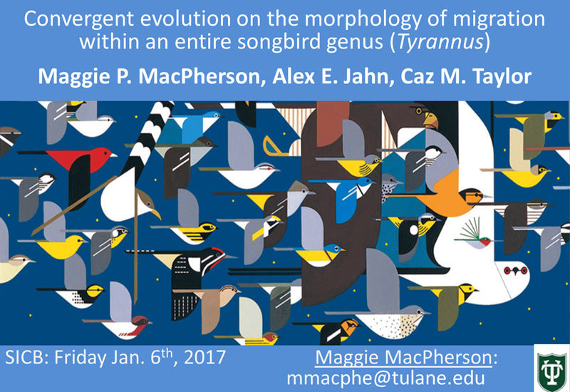 Maggie MacPherson's poster at SICB 2017